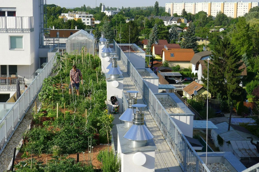 Dachgarten Wien
